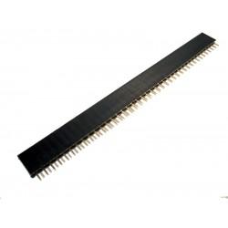 Female Header - 40 Pin