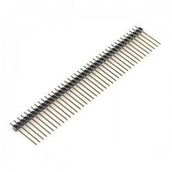 Male Header - 40 Pin-Long