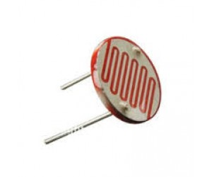 LDR - Light Dependent Resistor - Large